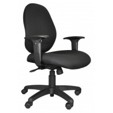Sun Ergo Chair w/Arms