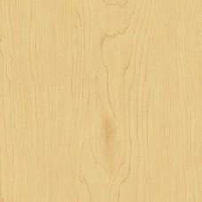 Natural Maple Laminate