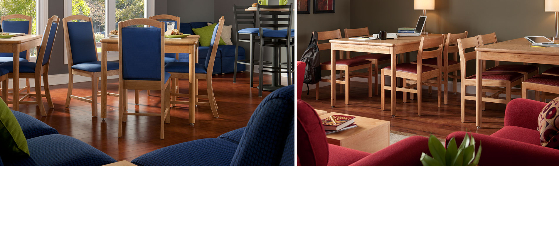 Study Dining Chairs